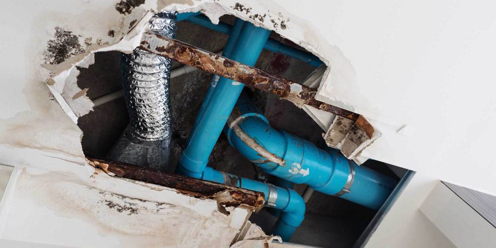 Signs You Have a Plumbing Leak in Your Home